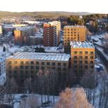 Massivtrehus i Kringsjå studentby